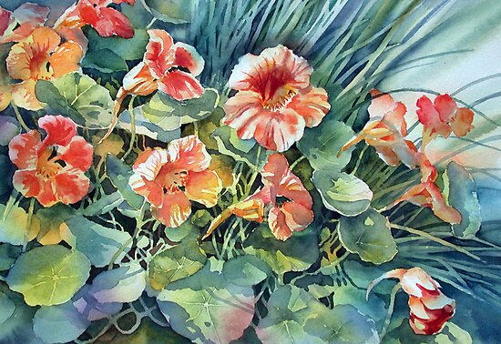Nasturtiums and Chives by Ann Mortimer