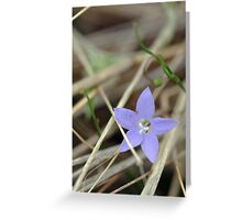 Tiny Blue Flower Greeting Card