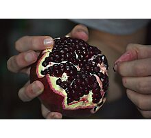 pomegranate Photographic Print