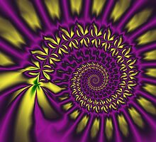 The purple / yellow spiral by walstraasart