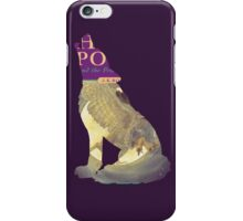 Harry Potter and the Wolf of Azkaban iPhone Case/Skin