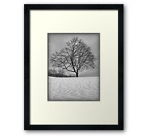 Mother Natures Work Framed Print