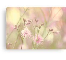 Pastel garden Canvas Print