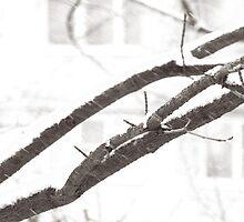 in white crayon. two by Nikolay Semyonov