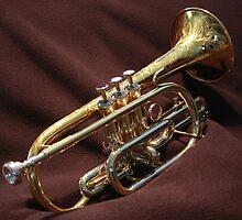 ~ Beautiful Brass ~ by Fotography by Felisa ~