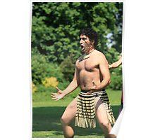 Maori warrior Poster