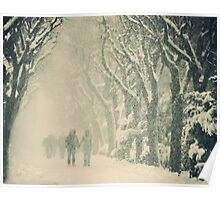 Mad winter Poster