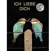 ICH LIEBE DICH, HAPPY VALENTINES  bee eaters Photographic Print
