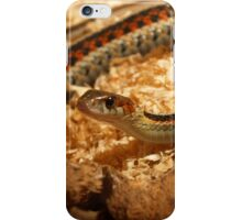 Thamnophis Elegans iPhone Case/Skin