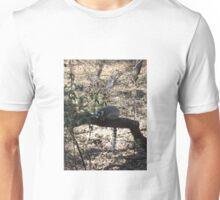 Ring-Tailed Lemur, Gauteng, South Africa Unisex T-Shirt