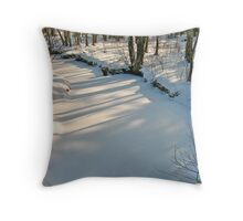 Reflections in the Stream IV Throw Pillow