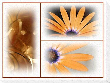 FlowerCollage by RosiLorz