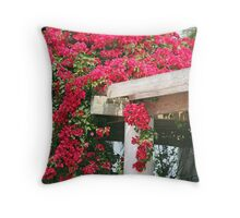 A Tranquil Moment Throw Pillow