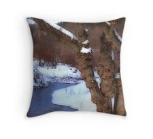 The Willow in Winter Throw Pillow