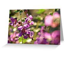 Purple Rays Greeting Card