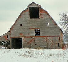 This Old Barn, Needs of some T.L.C. by David  Hughes