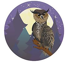 Owl in Night Forest Photographic Print