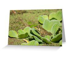 Green Dreams Greeting Card