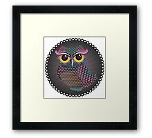 Pink and Blue Color Owl 2 Framed Print
