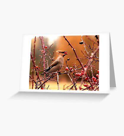Gulp...! Greeting Card