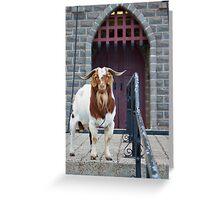 Big Billy Goat Gruff Greeting Card