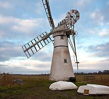 Thurne Mill, Norfolk, UK 2 by Gary Rayner
