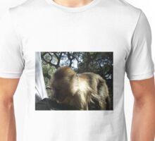 Capuchin Monkey 4, Gauteng, South Africa Unisex T-Shirt
