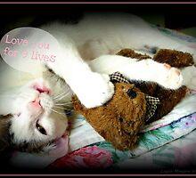 Kitten Valentine by Layla Morgan Wilde