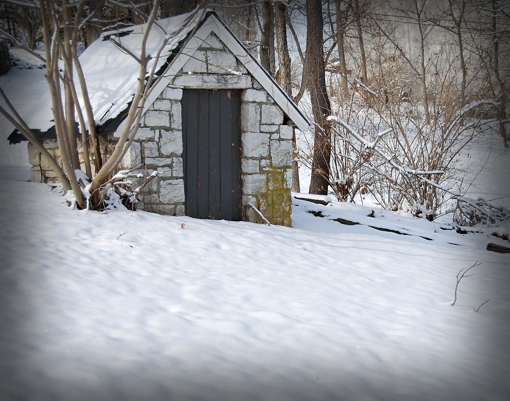 Winter's Snow by G. David Chafin