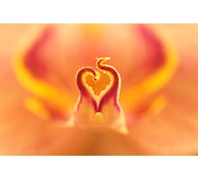 Flaming heart Photographic Print