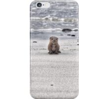 Young otter cub iPhone Case/Skin