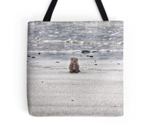 Young otter cub Tote Bag