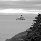 Tillamook Lighthouse by mikeno
