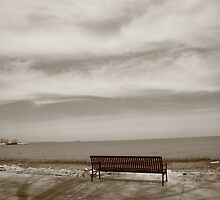 Lake and Park Bench by Frank Romeo