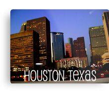 Houston edited Metal Print