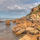 Shelly Beach Rocks by Paul Duckett