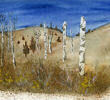 Birches in Winter by tracyannjones