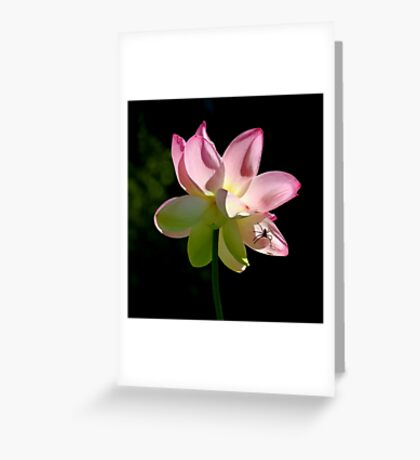 ~ Beauty and the Beast ~ Greeting Card