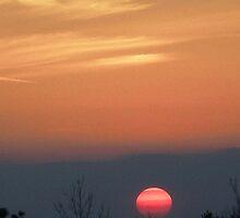 Pink Sun low by allmanstudio