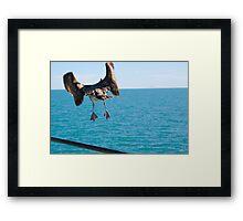 Takeoff and Bon Voyage Framed Print