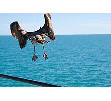 Takeoff and Bon Voyage Photographic Print