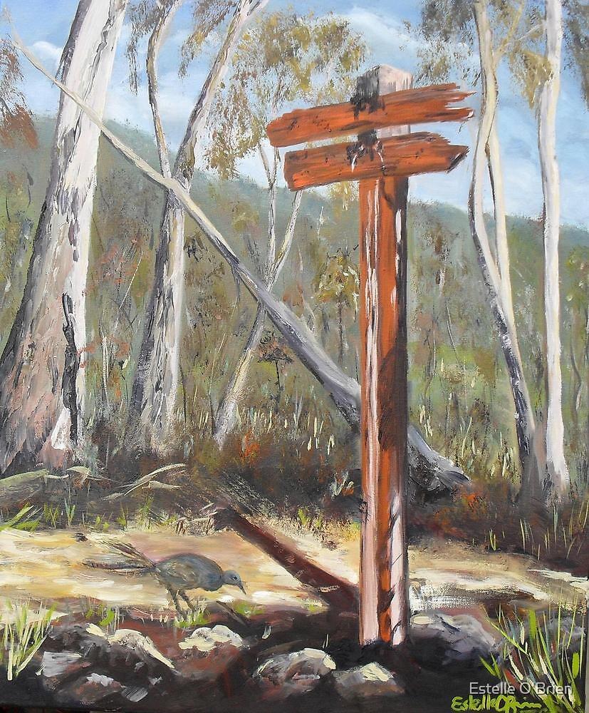 Wrights Trail by Estelle O'Brien