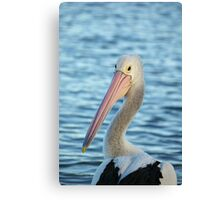 Looking back at ya! Canvas Print