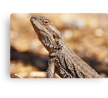 Central Bearded Dragon - Side Profile Canvas Print
