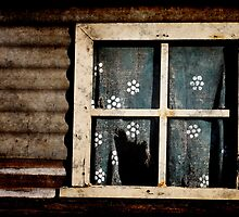 Old forgotten window by clearviewstock