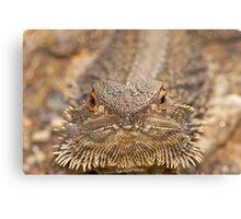 Hey Grumpy! Central bearded dragon Canvas Print