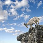 Rockclimbing Goat by clearviewstock