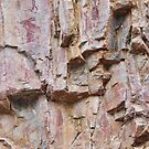 Rock Art - Katherine Gorge, NT by clearviewstock