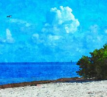 Bush in the Keys by D R Moore