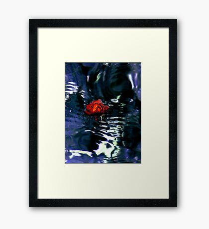 Red Rose In Dark Water Framed Print